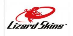 400x200-lizard.jpg